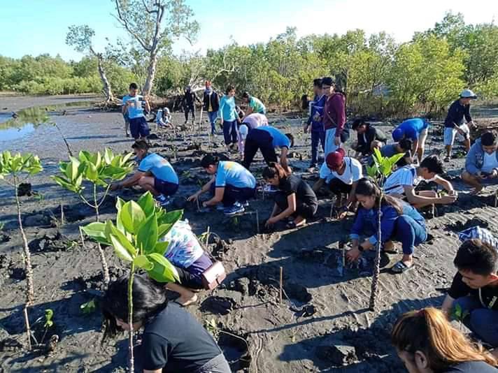 NSDN high school students doing Mangrove planting